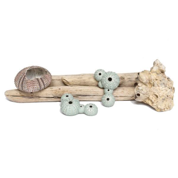 pendientes grandes triku de BaRock jewelry sobre palos con caparazón de erizo de mar y piedra