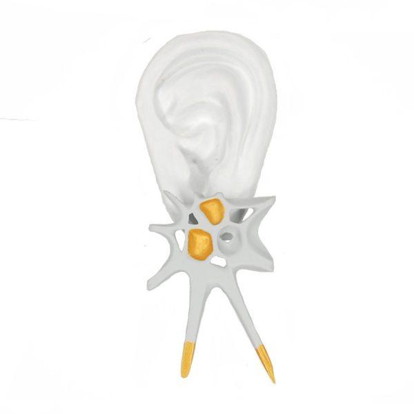 Pendientes espina blancos grandes sobre oreja blanca